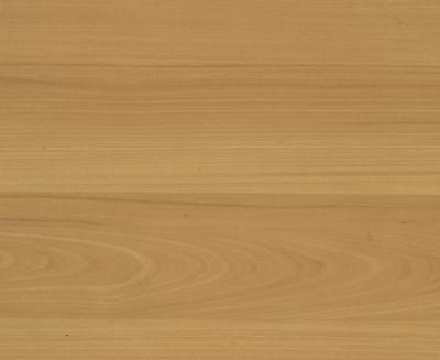 Boden - Linoleum